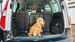 Abbildung des Angebots Hunde- und Gepäckschutzgitter