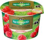 Abbildung des Angebots Kerrygold Fruchtjoghurt