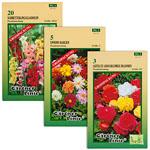 Abbildung des Angebots Blumenzwiebeln